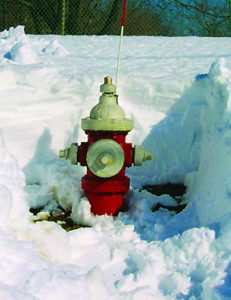 District_Hydrant_DugOut
